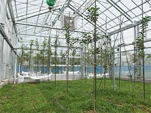 地球温暖化対策技術の開発
