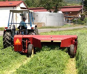 環境にやさしい農業生産技術の開発