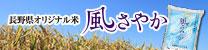 長野県オリジナル米 風さやか